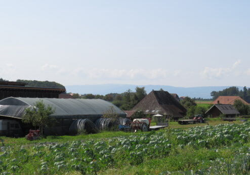 Rencontre avec les membres à la ferme bio Zaugg